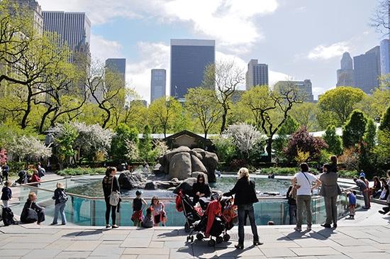 zoo-new-york