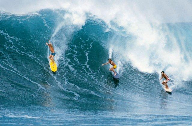 Affiche vintage surf grand