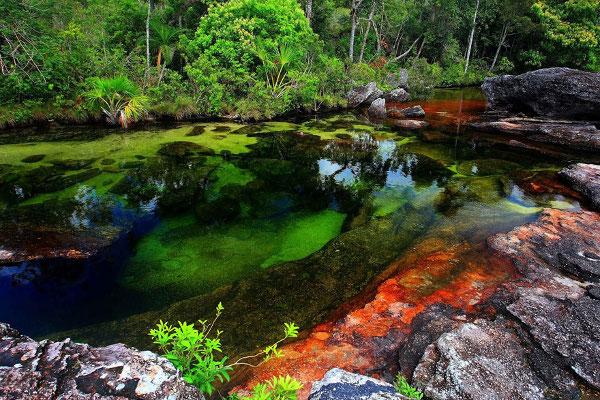 Cano Cristales Riviere en Colombie