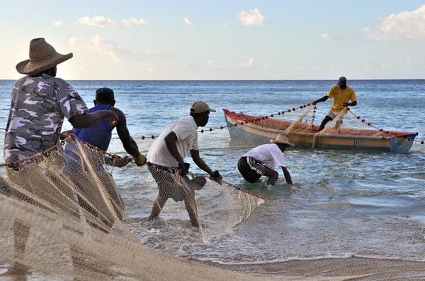 Ile de la Martinique - Anse Dufour