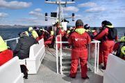 Islande - Deuxième excursion pour voir des baleine