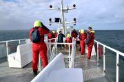 Islande - Excursion baleine