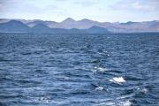 Islande - La mer d'Islande