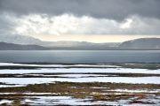 Islande - Sur la route de Thingvellir