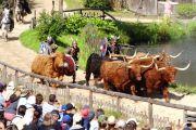 Puy du Fou - spectacle viking